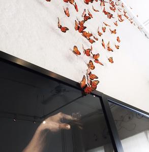 20150921192854-hand_butterflies