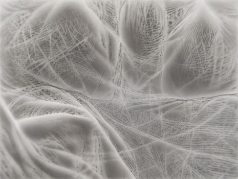 20150930122254-05_damato_wake_charcoal__pastel__digital_elemetns_42x54__