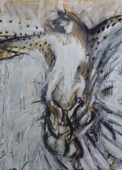 20151009200452-osprey