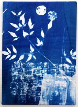 20151024151251-kaye_donachie__untitled__2015__cyanotype_print_on_cotton__cm_30x41