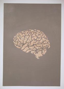 20151025162021-eggshell_brain_2