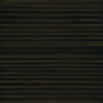 20151104015005-susanschwalb-aurora-_45
