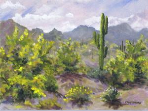 20151114233719-150513_palo_verde_and_saguaro_2015_