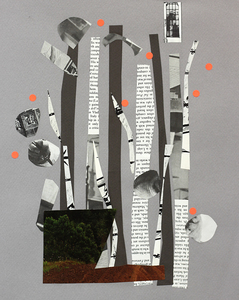 20151116193239-kathleenreichelt_whereitgrows_papercollage_5x4in_2015