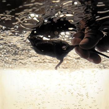 Underwatermouse2
