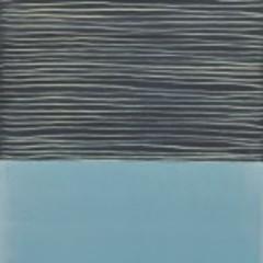 20151203211000-doug_-blue-calm-150x150