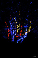 20160201203624-nighttrees_color60x40_rotated