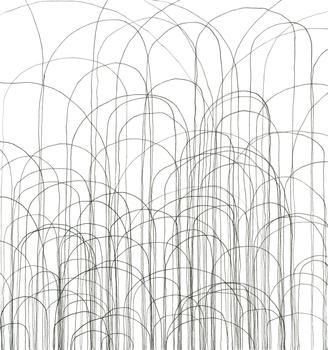 20160213073823-zeichnung_kuhn