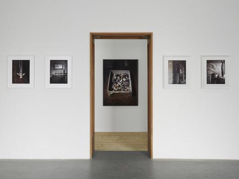 20160225160342-edeneden_bepighiotti_exhibitionviews__henrytrumble_02_100