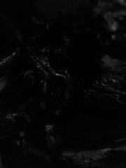20160317130156-jillrock-dark
