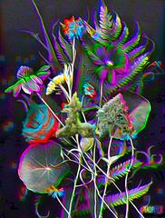 20160412135259-flowers_reduxwithtxtmj