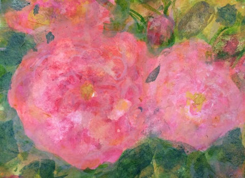 20160414064700-rose_de_l_arborete_ab
