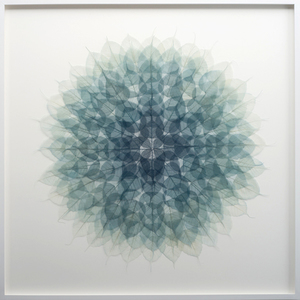 20160419201405-ando_forest_green_meditation_mandala__dyed_skeleton_bodhi_ficus_religiosa_leaves_monofilament_on_archival_ragboard_framed_41x41_sm