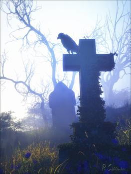 20160422104603-blue_crow_7sm