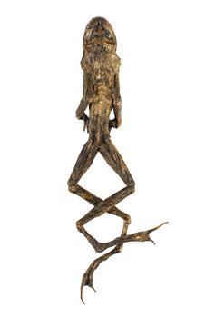 20160510140738-alison-wilding-_cellar-frog__-2016-_-alison-wilding