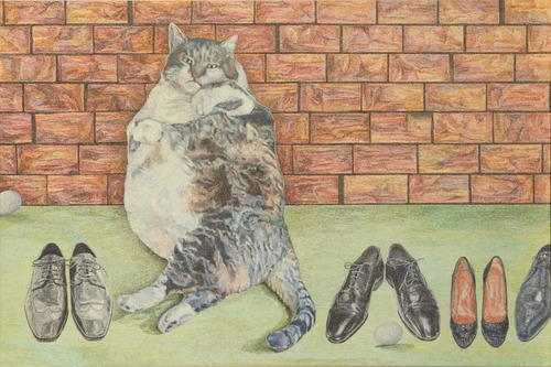20160614001808-shoe_kitty