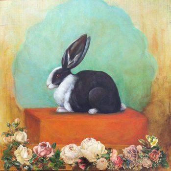 20170826202733-rabbit