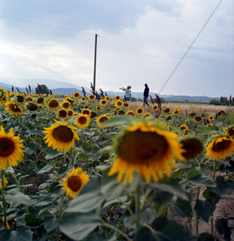 20160719190337-idomeni_greece_005