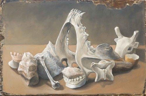 20160720180059-natureza-morta-com-ossos-e-pedras_baixa