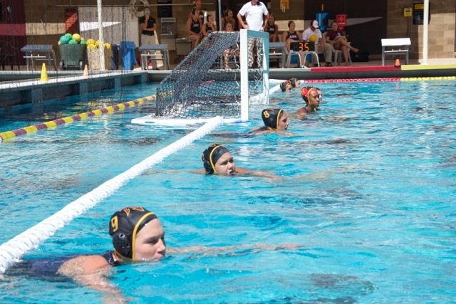 Water Polo 2015 Season Recap