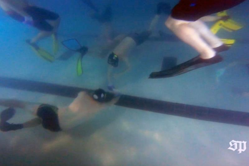 38221_waterhockey2p