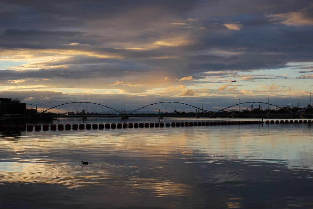 Best of asu 2017 the state press for Tempe town lake fishing