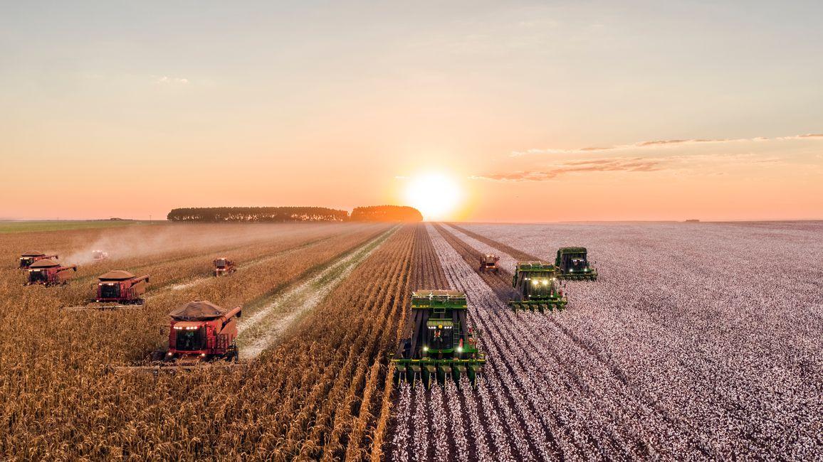 A fleet of tractors plowing a field.