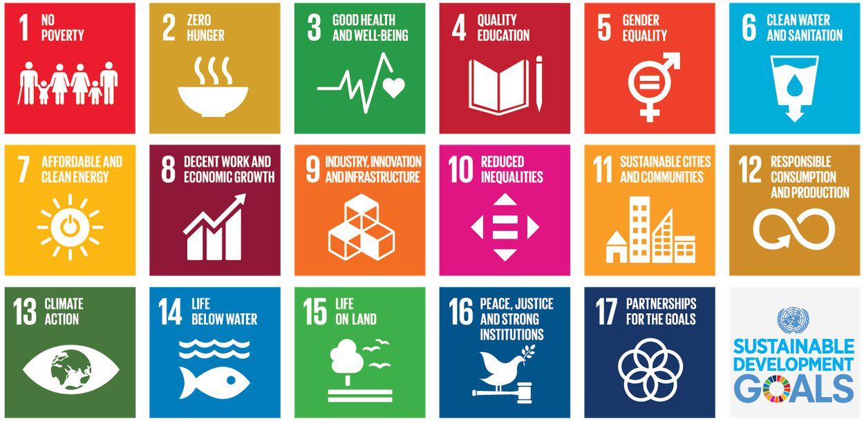 Every entity in the Boma ecosystem works towards meeting the United Nations' Sustainable Development Goals (SDGs).
