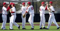 Ball State's baseball team congratulates each other after winning the first game of a doubleheader against Dayton on March 18. Seven Cardinals were named Academic All-MAC for their performance both on the field and in the classroom.DN FILEPHOTO GRACE RAMEY