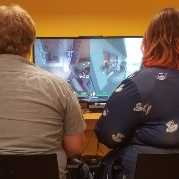 New adult gaming group aims to critique video games