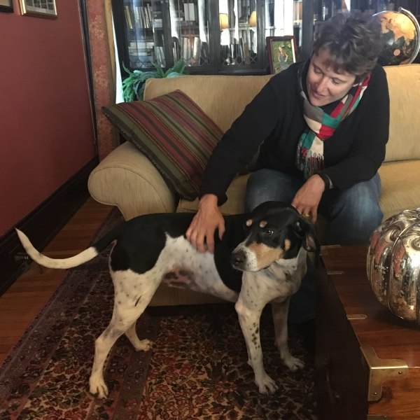 Teacher's Pet: Coco, the coonhound, found home with pair of Ball State professors