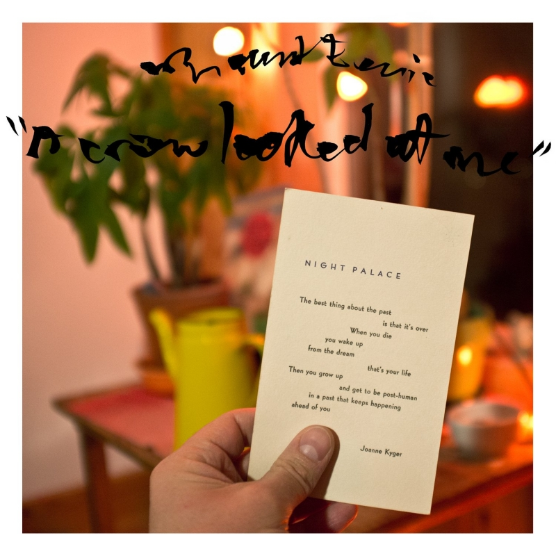 Mount Eerie's 'A Crow Looked at Me' is Phil Elverum's simplest, most genuine album yet