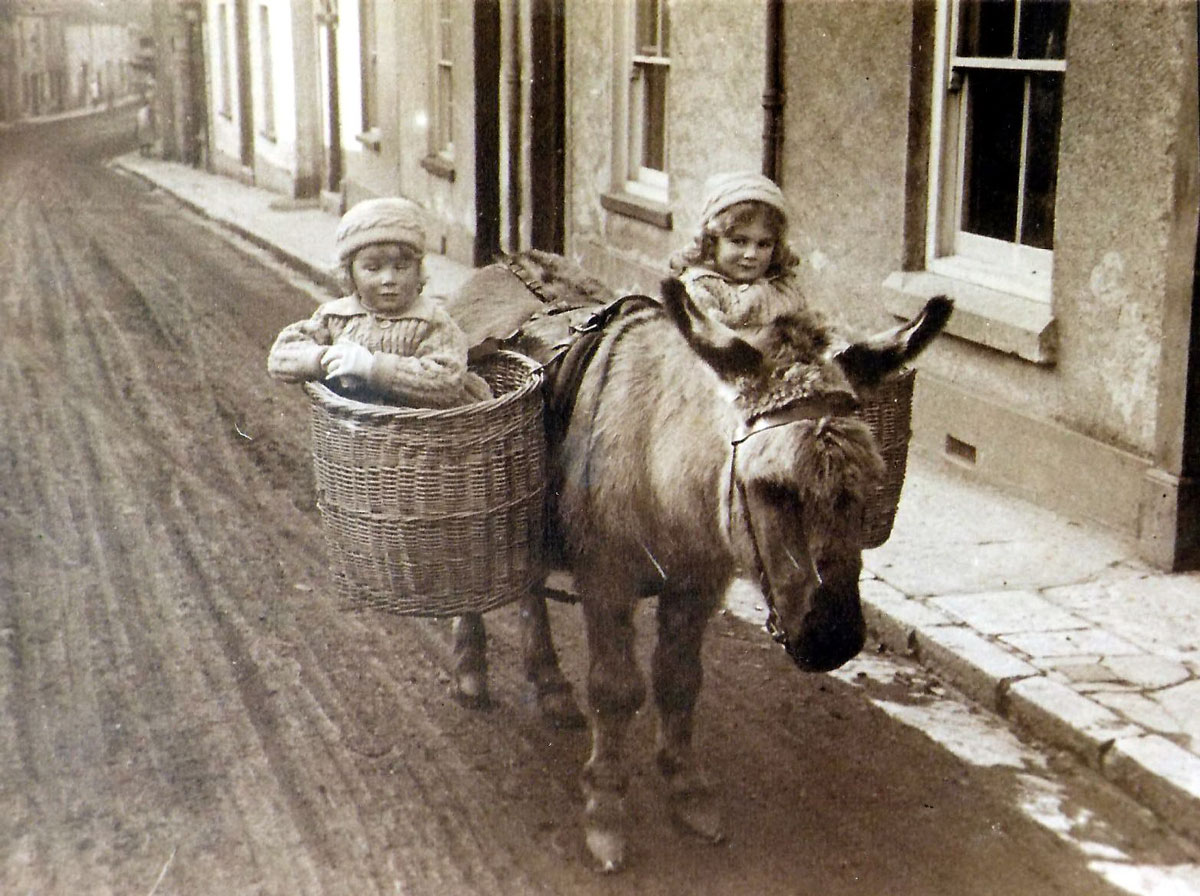 Donkey & Children, New Exeter Street