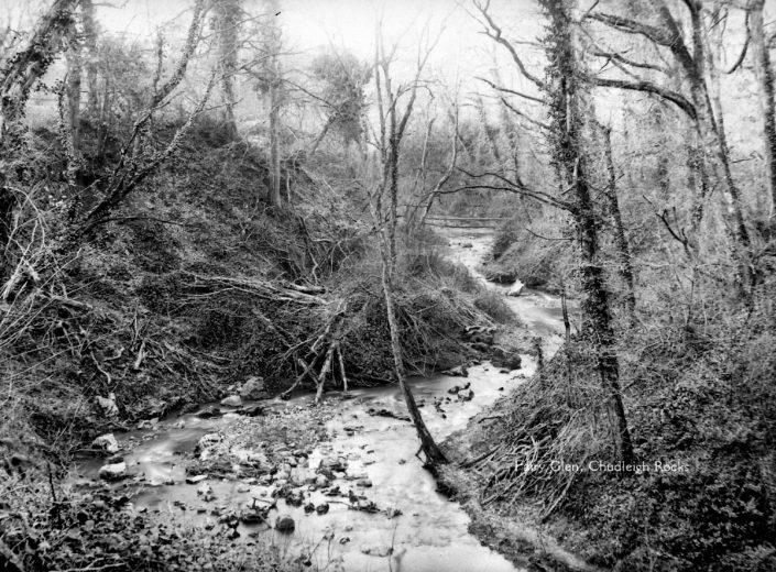 Pixy Glen, Chudleigh Rocks, Devon