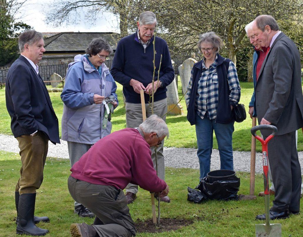 Tree planting Chudleigh Parish Church