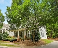 Old Suwanee | Offered at: $300,000   | Located on: Jackson