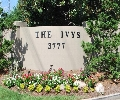 The Ivys   Offered at: $299,900     Located on: Ivy