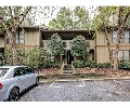 Dunwoody Court   Offered at: $150,000     Located on: Dunbar