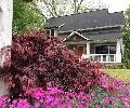 Village at East Atlanta   Offered at: $450,000     Located on: Braeburn