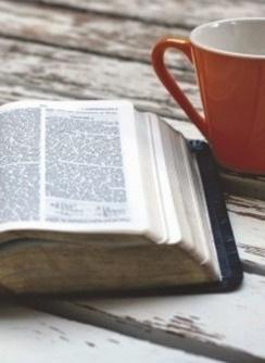 Springfield Bible Church   Family Devotions