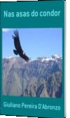 Nas asas do condor