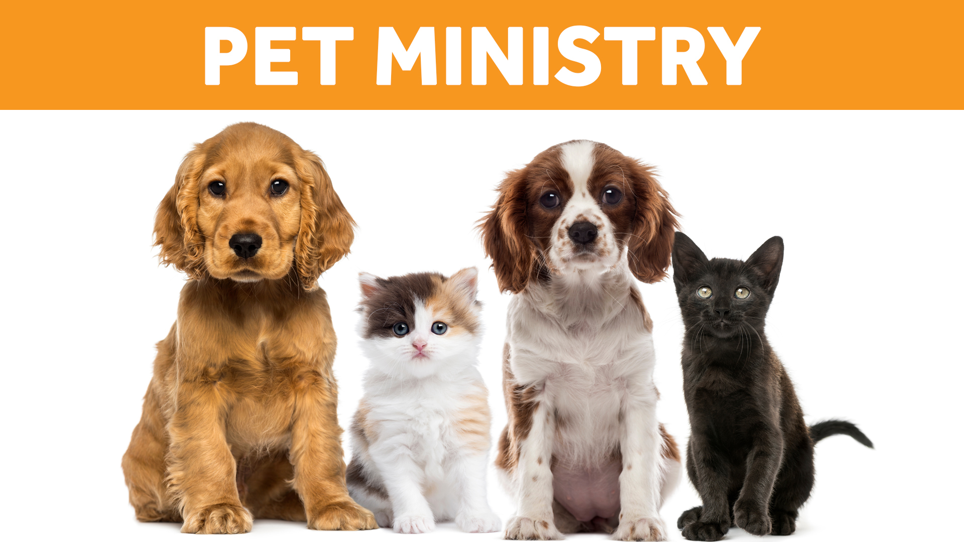 Pet Ministry Resources