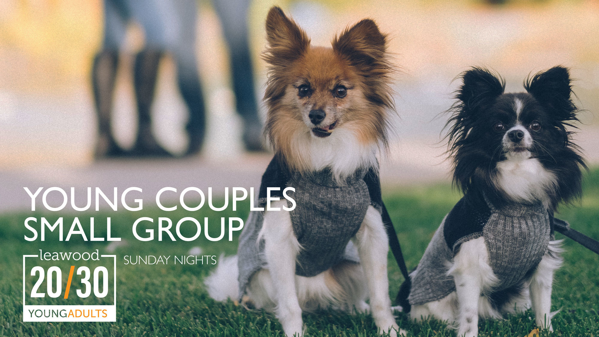​20/30 Young Couples Small Group (A)