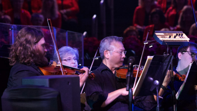 Adult Orchestra