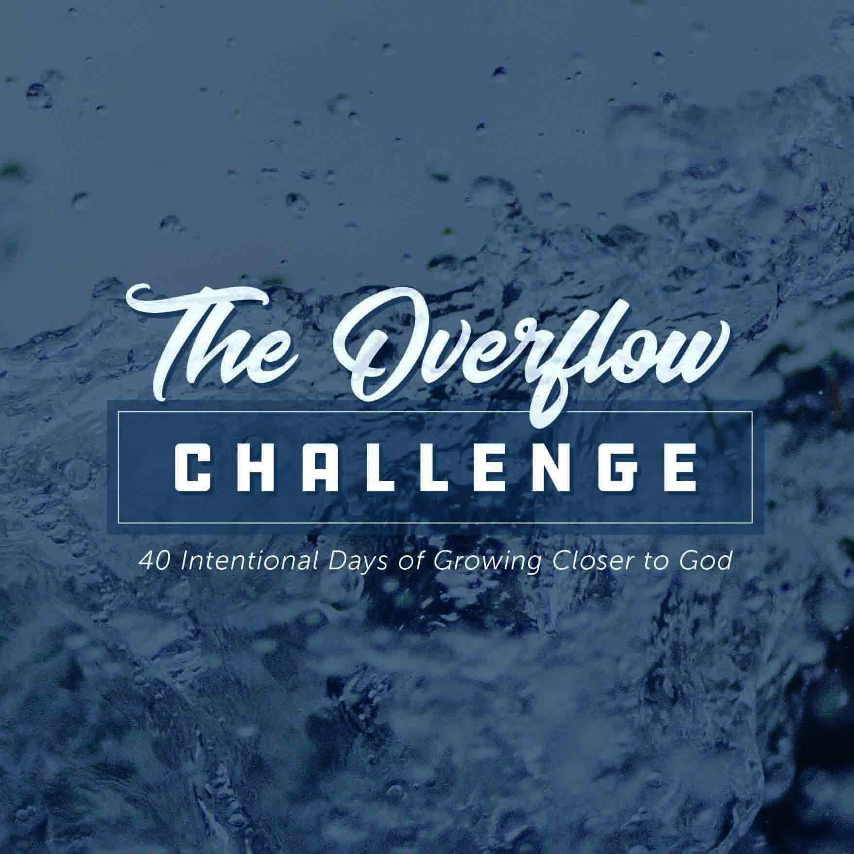 The Overflow Challenge