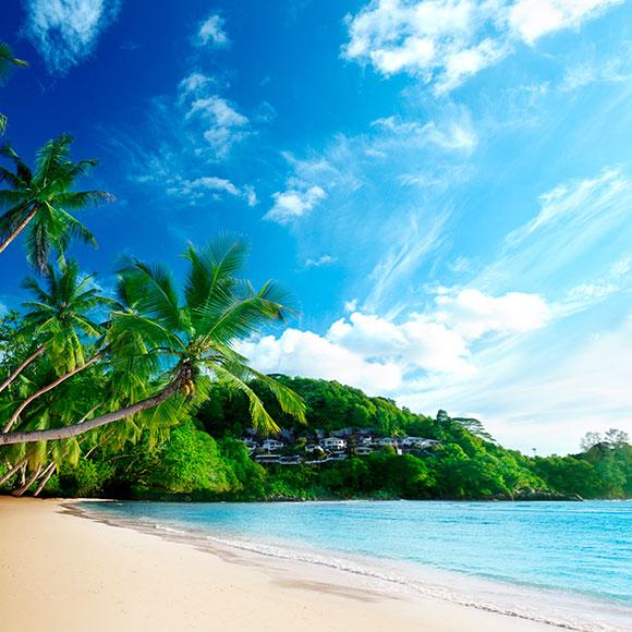 Cancún del 07 al 13 octubre del 2019