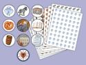 Reformation Walk-Sticker Sheets