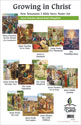 Bible Story Poster Set 7: New Testament