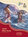 Adult Bible Study (NT2) - Downloadable