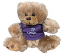 Bear - Brown with Purple Shirt